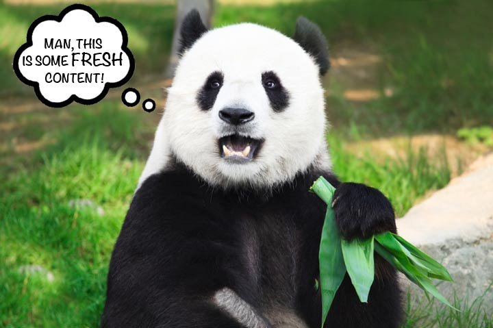 Google's Panda 4.0 Update Wants to Eat Only Fresh Content | Percussion: https://percussion.com/blog/2014/may/googles-panda-40-update-wants...